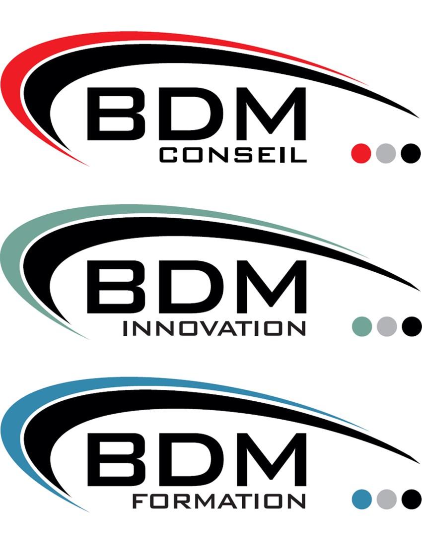 BDM CONSEIL