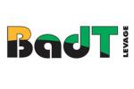 861450435058badtlevage_logo_min.png